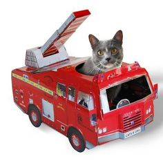 Fire engine playhouse for kitty