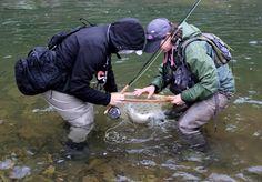 57 Best Catch Fish images in 2018 | Fishing, Women fishing