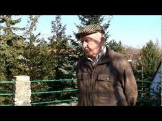 Gyuri bácsi az allergiáról beszél - YouTube
