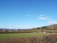 WhileAway Lodge, StrawberryField Park, Draycott Cheddar - View from decking