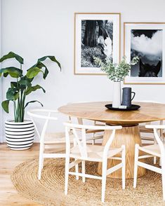 Beautiful Bright Dining Area With Round Wooden Dining Table Atop A Circular Woven Rug - Gorgeous Huge Houseplant Too!