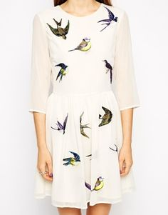 Enlarge ASOS Skater Dress with Pretty Bird Embroidery