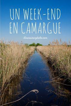 Escapade de deux jours en Camargue : Arles et les espaces naturels.