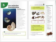 """Unidad 6 de Ciencias de la Naturaleza de 3º de Primaria: """"Los invertebrados"""" Science And Nature, Interactive Activities, Unity, Knowledge, Note Cards, Science And Nature Books"""