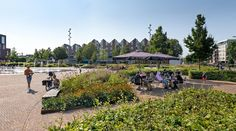 Ede Market Square « Landscape Architecture Platform | Landezine Landscape Architecture, Landscape Design, Dolores Park, Platform, Marketing, Planting, Garden, Travel, Plants