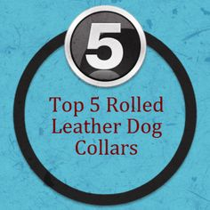 Rolled Leather Dog Collar top 5 list...