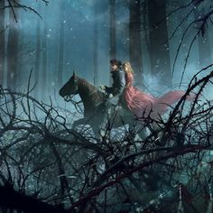 Woods, fantasy , lady, night, knight, thorns, horse, rider, dark