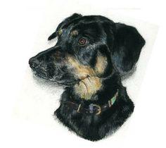 Black dog - Mixed media on paper Tiffany Landale - www.foxkay.co.uk Tiffany, Mixed Media, Paper, Dogs, Animals, Black, Animales, Animaux, Black People