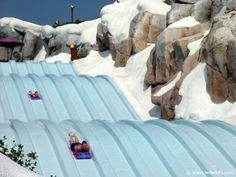 Disney's Blizzard Beach Water Park https://www.facebook.com/ilovedisneyfan?ref=hl