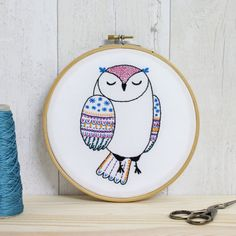 Owl Contemporary Embroidery Kit Embroidery Hoop Art Modern