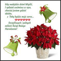 Kartka świąteczna 🌲🌲🌲🌲🌲 Christmas Printables, Plants, Picture Wall, Christmas, Christmas Images, Plant, Planets