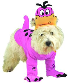 Rubies Costume Flintstone Dino Pet Costume *** See this great product. (This is an affiliate link and I receive a commission for the sales)