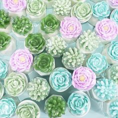 I mean, if we're going to wash our hands a billion times a day, might as well wash up with pretty soaps, right! Have yourself a Happy Succulent Saturday 🌿🌸 #sunbasilsoap
