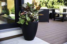 Patio Planters, Planter Pots, Front Entrances, Architecture Details, Canning, Plants, Outdoor, Outdoors, Window Boxes