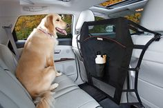 Backseat Barrier to keep your pooch in back and not wedged between the two seats.