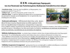DXN βιολογική καλλιέργεια by Tóth Lajos - DXN Europe Kft. via slideshare