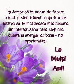 Birthday Wishes, Happy Birthday, Lily, Happy Brithday, Special Birthday Wishes, Urari La Multi Ani, Happy Birthday Funny, Orchids, Lilies
