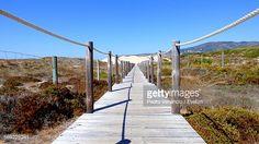 Foto de stock : Wooden Walkway On Beach Against Clear Blue Sky