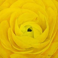 Ranunculus Flower Painting Original Oil Painting by APaintedCanvas