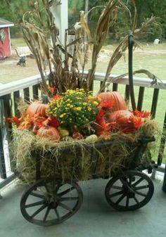 A little fall,in an old goat wagon....