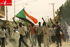 Public Pulse: Sudan