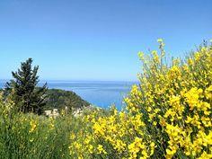 Sea view from Nature Villas! Greece Travel, Villas, Islands, Around The Worlds, Sea, Mountains, Nature, Naturaleza, Greece Vacation
