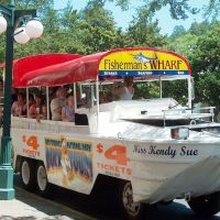 32 Things to Do with Kids in Hot Springs, AR Family Vacation Spots, Vacation Places, Best Vacations, Vacation Trips, Family Vacations, Arkansas Vacations, Eureka Springs Arkansas, Spring Vacation, Travel Goals