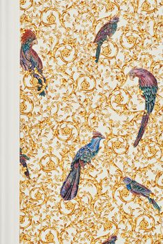 A golden ornament theme connects the exotic birds perching majestically within it. This Versace wallpaper with a premium-quality, robust vinyl coating is an expression of delicate decadence which can turn (feature) walls into real eye-catchers. Versace Wallpaper, Hallway Wallpaper, Bird Perch, Exotic Birds, Create Space, Foyer Wallpaper, Accent Walls, Wall Papers, Artworks