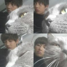 V and his cat? Idek, I'v seen him with so many cats and dogs!!