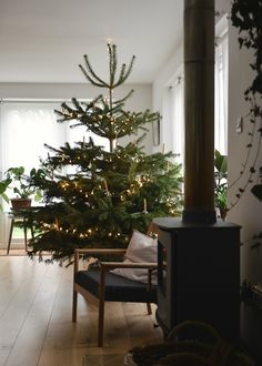 7 Resolute Clever Hacks: Natural Home Decor Living Room simple natural home decor guest rooms.Natural Home Decor Rustic Texture natural home decor modern plants.Natural Home Decor Diy Front Doors. Minimal Christmas, Simple Christmas, Winter Christmas, All Things Christmas, Christmas Home, Minimalist Christmas Tree, Natural Christmas Tree, Christmas Mantles, Real Christmas Tree