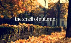 The Smell of Autumn