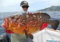 img-1121-jigging-grouper.jpg
