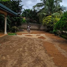 One of our Landscaping work at Katunayake Landscaping Work, Provence, Grass Field, Lawn Care, Green Grass, Sidewalk, Country Roads, Construction, Landscape