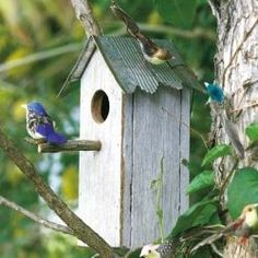 Build a roost for your feathered friends from waste material. Click for the 3-step how-to! #howtobuildabirdhouse