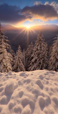 Winter light | Kevin McNeal Photography