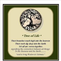 Delicieux Tree Of Life Meaning   Google Search
