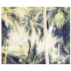 Tropics Canvas 150x125cm | Freedom Furniture and Homewares