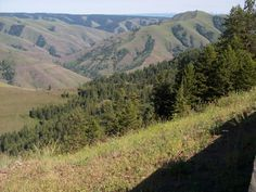 Joseph Canyon, in Wallowa County: a quintessential Northeast Oregon view. :D