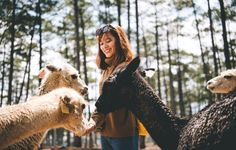 10 Idyllic Farm Stays And Animal Sanctuary Vacations For Animal Lovers | Rodale's Organic Life
