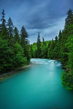 Big Wedeene River in the Great Bear Rainforest, British Columbia