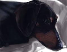 "Check out new work on my @Behance portfolio: ""Man's best friend.  Badger-dog Zahar"" http://be.net/gallery/34395657/Mans-best-friend-Badger-dog-Zahar"