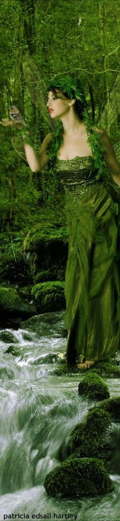 republicans destroy the feminism in mother nature World Of Color, Color Of Life, Go Green, Green Colors, Green Art, Pantone, Vert Olive, Foto Art, Relax