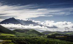 Vertigo, Pico, Azores Islands, Portugal by Pedro Silva