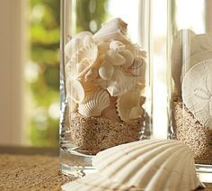 pottery barn shell displays - Google Search