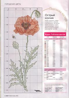 bee. poppy. cross stitch.