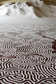 De Japanse kunstenaar Motoi Yamamoto deed er 45 uur over om zijn zoutkunstwerken te creëren.