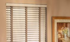 Blinds Steve's Exclusive Collection Mini Blinds 1 Slat Economy true White SB544 by Steve's Exclusive Collection Blinds. $14.63