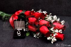 Red Dozen Wax Dipped Roses