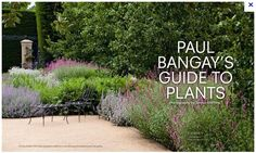 The 19 Best Paul Bangay Images On Pinterest Gardens Landscaping