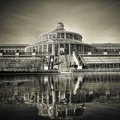 Copenhagen Botanical Gardens, beautiful photo by Michael Dreves